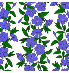 Floral elegant background periwinkle seamless vector