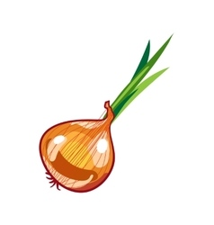 fresh brown onions on white vector image