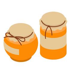 honey jar icon isometric style vector image