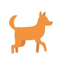 pet dog domestic animal isolated icon design vector image