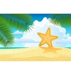 Starfish on the beach vector image