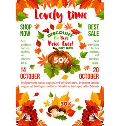 Sale banner with autumn leaf fall season pumpkin vector