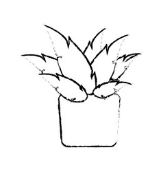 pot plant natural decoration ecology sketch vector image vector image