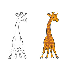 an amusing animation giraffe for the coloring book vector image
