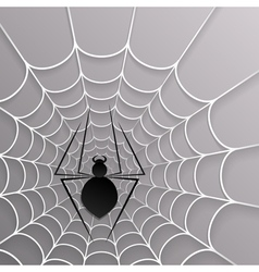 Black spider web on white on a gray background vector image