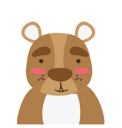 Colorful adorable and surprised bear wild animal vector