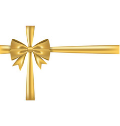 Gold gift bow ribbon golden bow tie isolated on vector