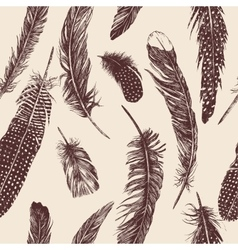 Hand drawn vintage pattern with feathers vector image
