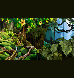 Landscape jungle with an overgrown stone vector