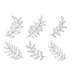 Leaves in line style modern line art for poster vector