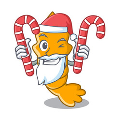Santa with candy steamed fresh raw shrimp on vector