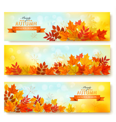 Set of three nature banners with colorful autumn vector