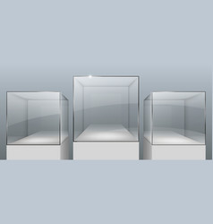 Showcases from glass vector