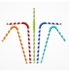 Striped Colorful Drinking Straws Set vector image