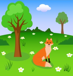 Red fox on the forest meadow vector image