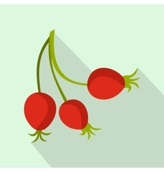 Briar fruits icon flat style vector image vector image