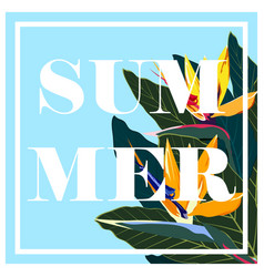 simple summer card vector image