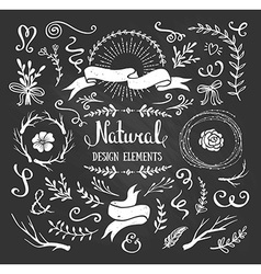 Vintage graphic set of flowers branches leafs and vector image vector image