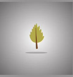birch leaf green isolated vector image
