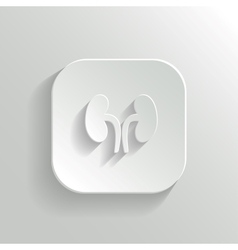 Kidneys icon - white app button vector image