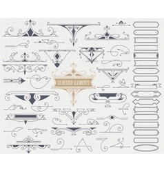 Kit 55 vintage elements for invitations vector