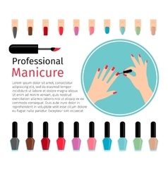 Nail polish and different colors nails vector