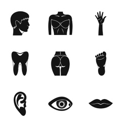 Outer part of body icons set simple style vector