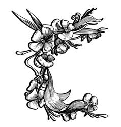 Baroque floral element vector