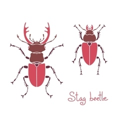Male and female stag beetle Lucanus cervus Stag vector image