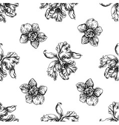 seamless pattern with black and white orchid vector image