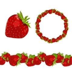 Strawberry Objectgarland and border vector image