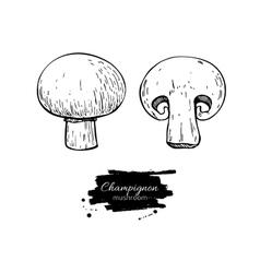 Champignon mushroom hand drawn vector image