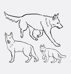 german shepherd pet dog animal sketch vector image vector image