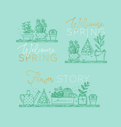shelf with flowers welcome spring turquoise vector image