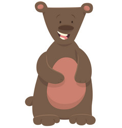 Bear or teddy animal character vector