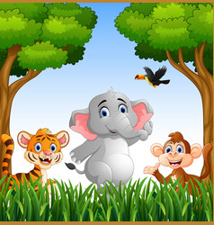 Cartoon animals in the jungle vector