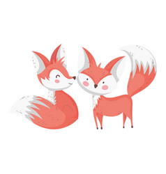 cute foxes cartoon animals on white background vector image
