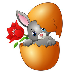 easter bunny hatched from an egg with red flower vector image