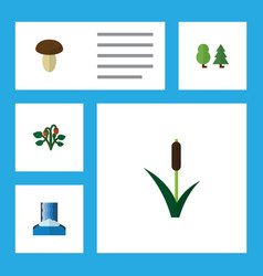 Flat icon ecology set of cascade cattail berry vector