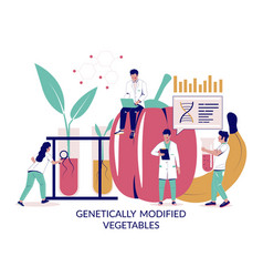 Genetically modified vegetables concept vector