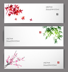 Three banners with maple bamboo and sakura vector