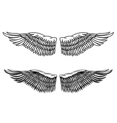 vintage style of eagle wings design element for vector image