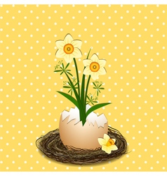 Easter Holiday Yellow Daffodil Flower vector image vector image
