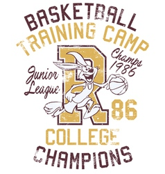 Rabbit basketball training camp vector image vector image