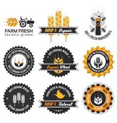 wheat production label set vector image vector image