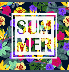 tropical summer pattern vector image vector image