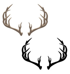 antler in both color and black vector image