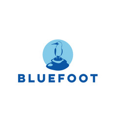 blue-foot-bird-logo vector image