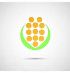 Creative icon of corn on a simple background vector