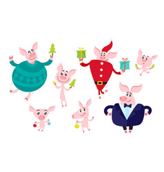 Cute cartoon pig with christmas elements isolated vector